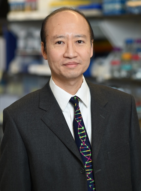 Stephen H. Tsang, MD, PhD